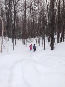 Chelsea snowshoe