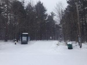 xc ski Parc Gatineau