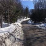 Chelsea road run